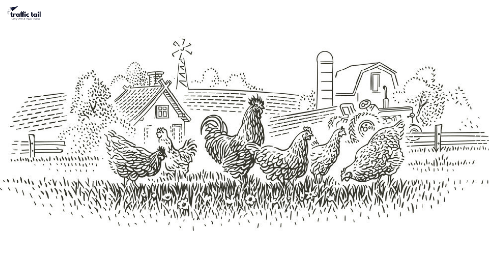 How To Start Poultry Farming In India?